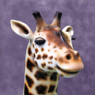 3D Giraffe Cake Head Close Up